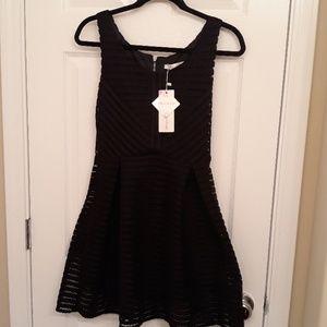 Little Lacey Black Dress